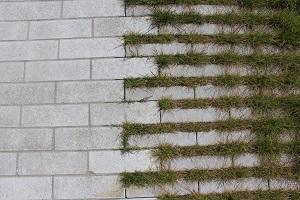 Hydro Lineo levert een kostenbesparing op wat beheer betreft. Het gras wordt gemaaid alsof het een gazon is.