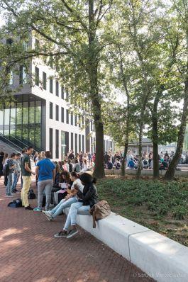 Zitelementen van beton|groenopsluiting|parkbanden beton