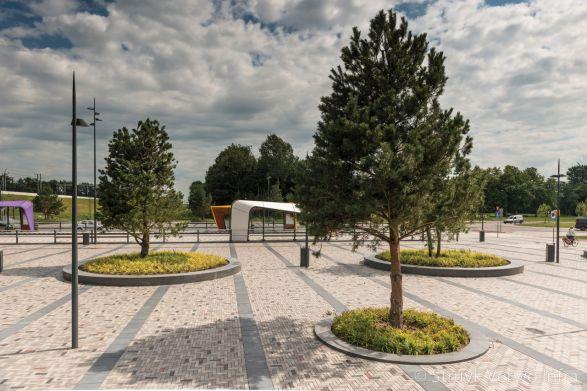 Boomspiegels|boombescherming|NS station Dronten Noord|Energieweg Dronten