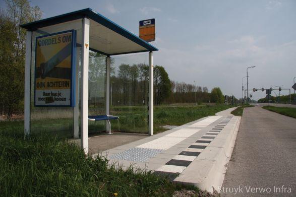 Bushaltes Provincie Flevoland|mammoettegel|zwart wit markering bushalte