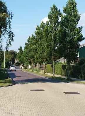 Renovatie centrum Groet - Meeuwenlaan lavaro