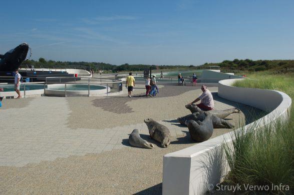 Natuurlijke bestrating met zeehonden|Ecomare de Koog Texel