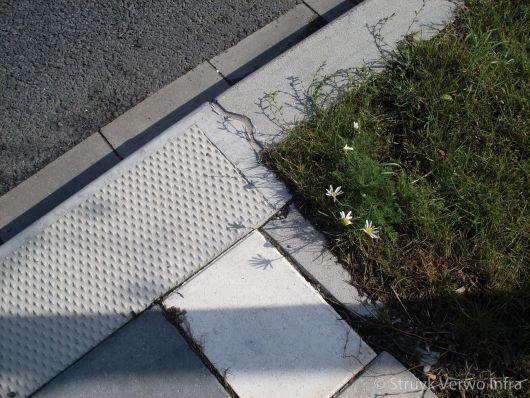 Busperron naast fietspad|verloopband naar bushalteband