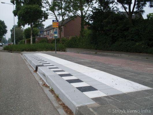 Inrichting bushalte met zwart/wit markering, geleidelijn- en noppentegels