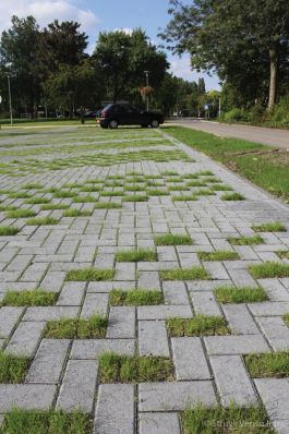 Groenbestrating|gras bestrating|Greenbrick|waterdoorlatende bestrating|grasstraat