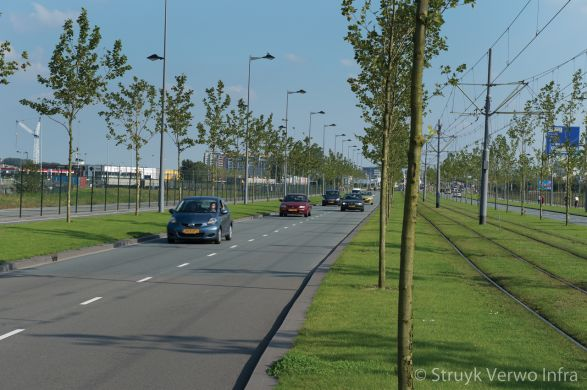 Laan op Zuid Rotterdam trottoirband