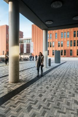 Breccia 21x6,9x8cm bv tagenta b-c-e elleboogverband|gewassen betonstraatstenen