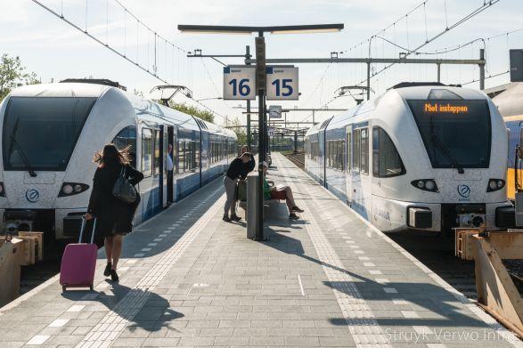 Perronbestrating Zwolle