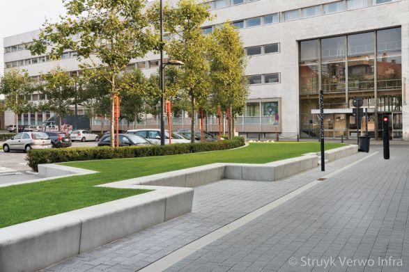 Betonnen parkbanden in groenstrook