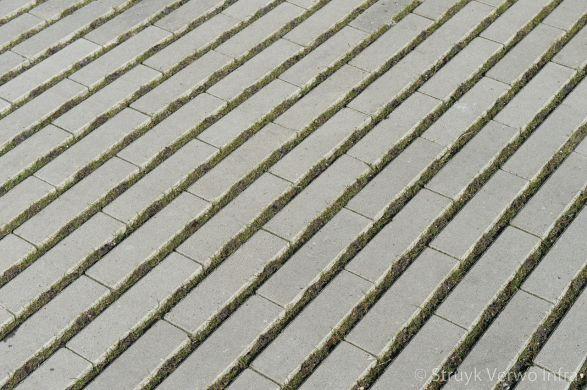 Hydro Lineo|groenbestrating|graslijnen|groenstroken|bestrating met gras