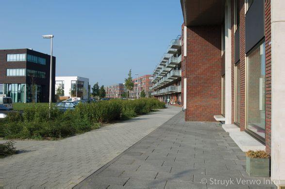 Grijs en zwarte uitgewassen bestrating op trottoir