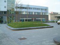 Groenaanleg Schiphol