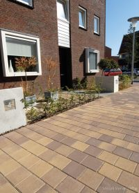 Vinexwijk Stadshagen