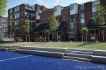 Schout Heinrichplein Rotterdam
