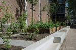 Solid 2 trede-element|Schout Heinrichplein Rotterdam|aanleg buurt moestuin Rotterdam|betonnen zitelementen|parkbanden|traptreden beton