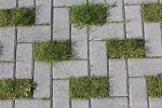 Greenbrick op parkeerplaats Ursula park|klimaatadaptieve bestrating