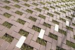 Greenbrick|grasklinker|grasbestrating|grasdoorlatende bestrating|groenbestrating