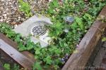 Well-O-Edge in tuin