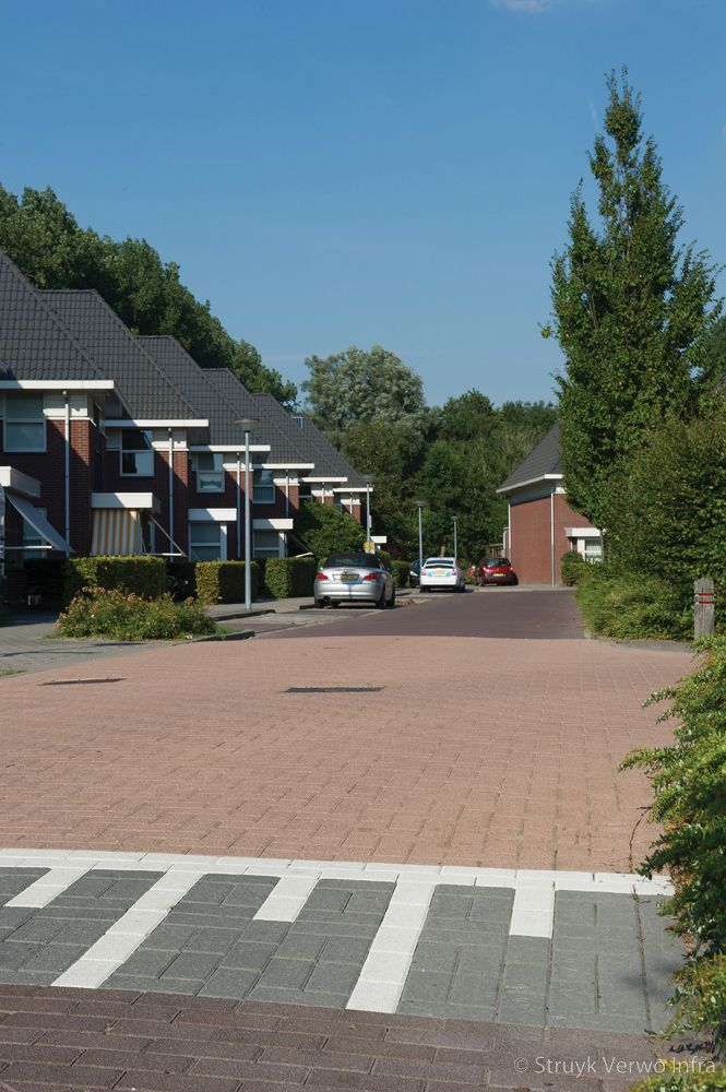 Verkeersdrempel met gewassen bestrating in woonwijk