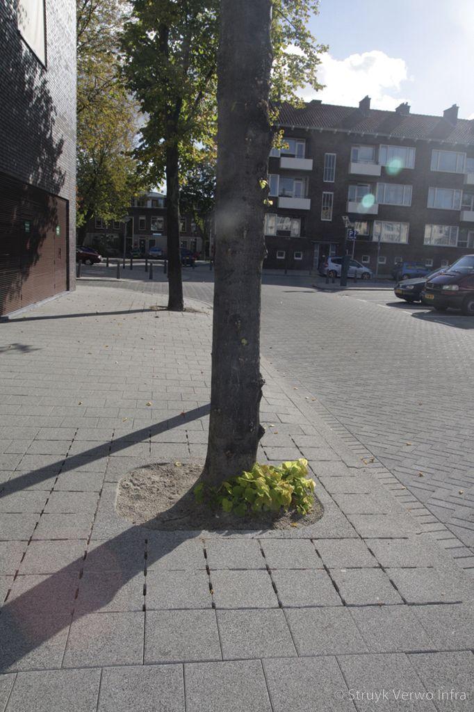 Boomkrans element van beton met uitgewassen deklaag boomroosters beton