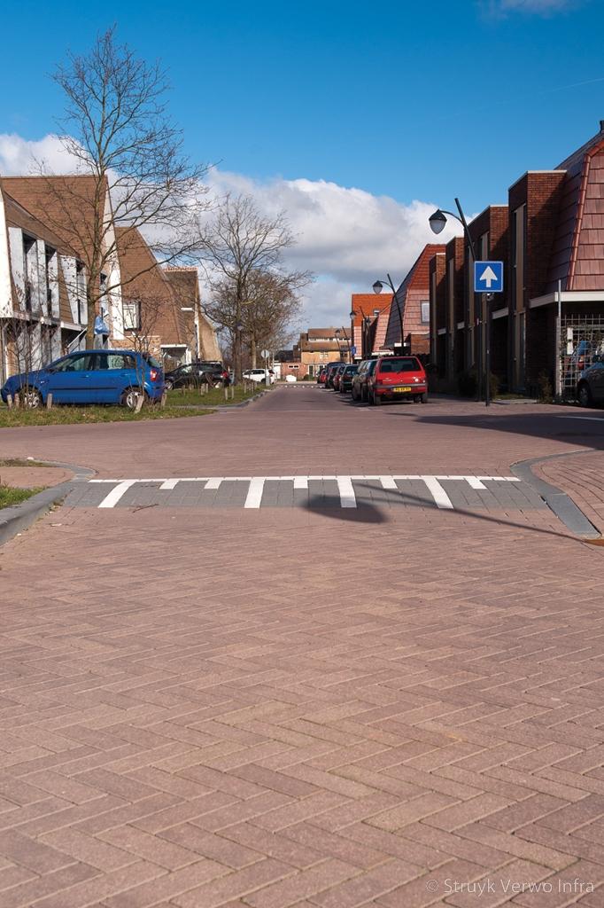 Bestrating in woonwijk vathorst alternatief op keramische bestrating keranova