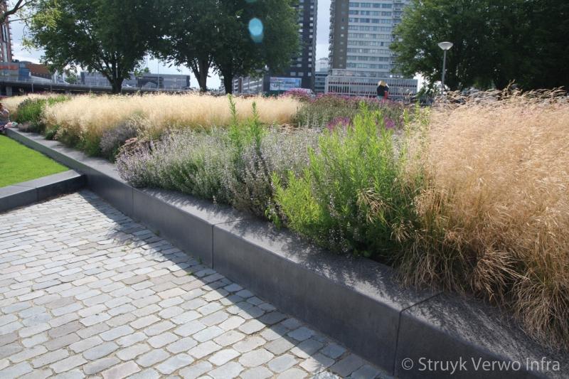 Project leuvehaven betonband