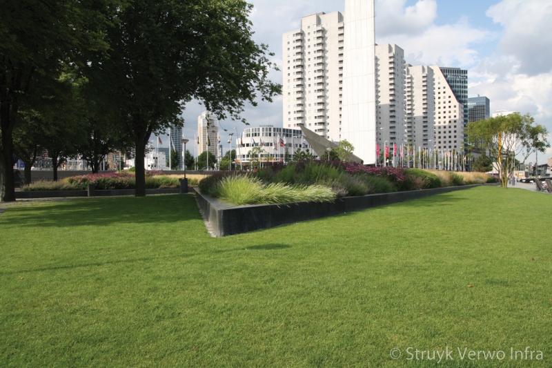 Geslepen betonbanden antraciet leuvehaven rotterdam zitranden beton