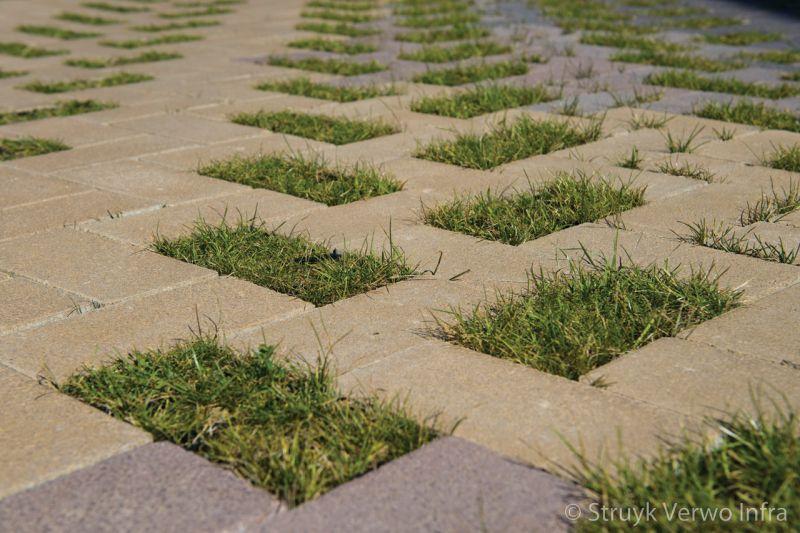 Greenbrick groenbestrating klimaatadaptieve bestrating