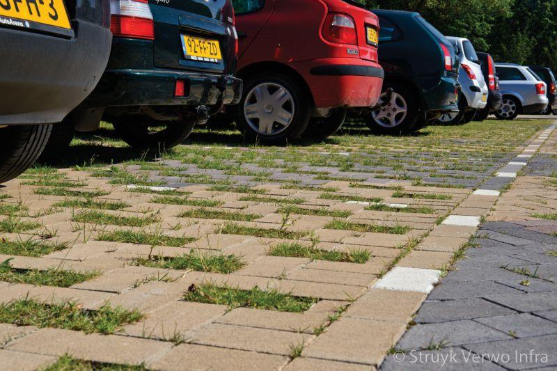 Vakjes gras op parkeerplaats grasstraat groenbestrating grasklinker