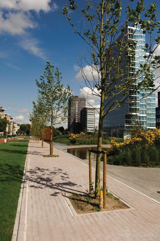 Uitgewassen bestrating kantorenpark wtc terrein almere stadspark gewassen straatsteen
