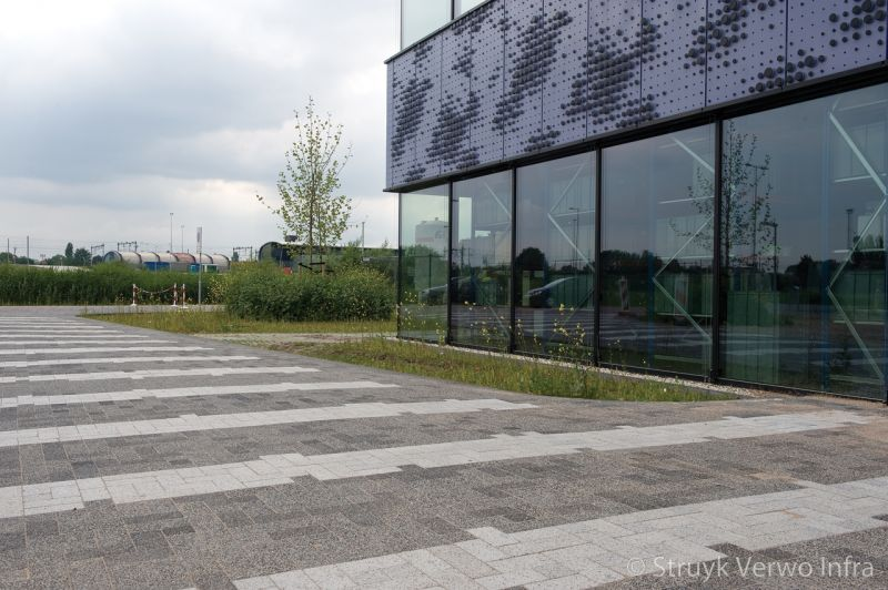 Vlakken grijs in bestrating scienncepark amsterdam kleurvaste betonstraatsteen elementenverharding