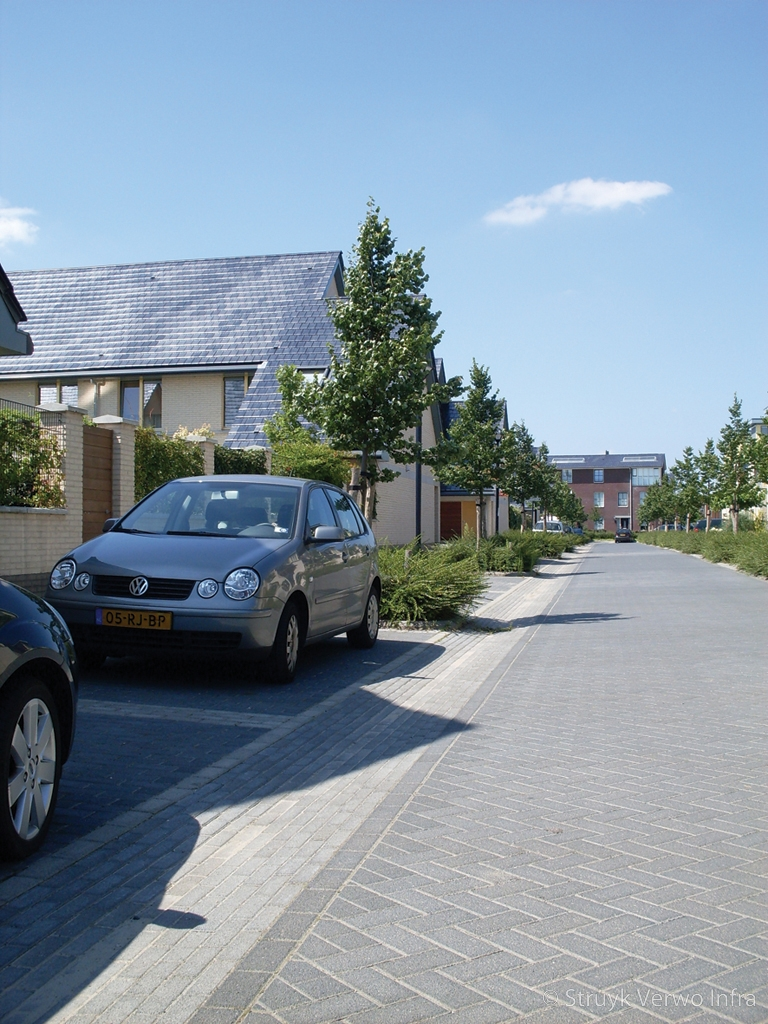 Parkeren in loovelden