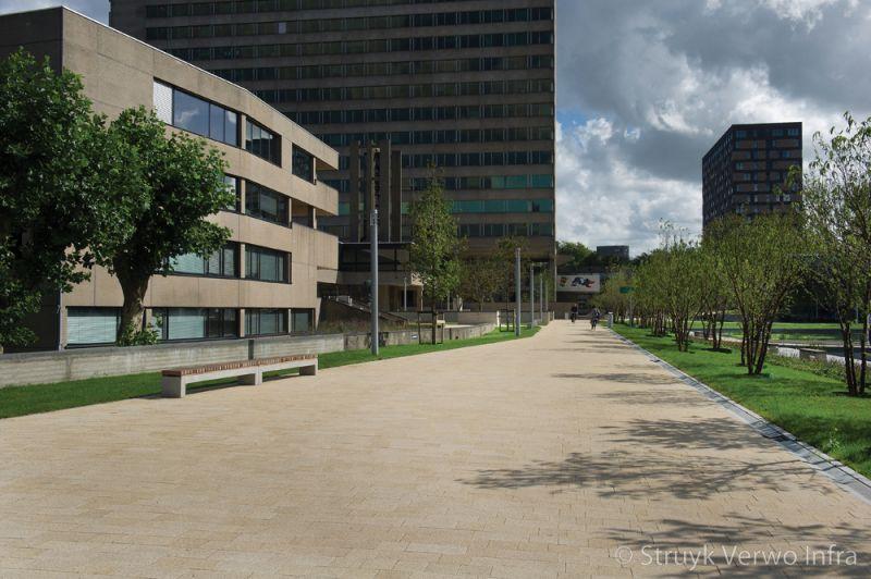 Rotterdam erasmus universiteit parksteen