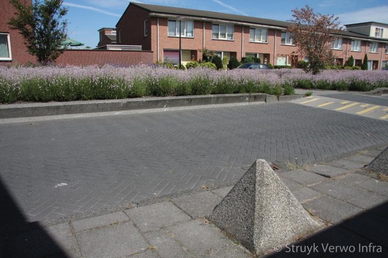 Antiparkeermaatregelen in woonwijk