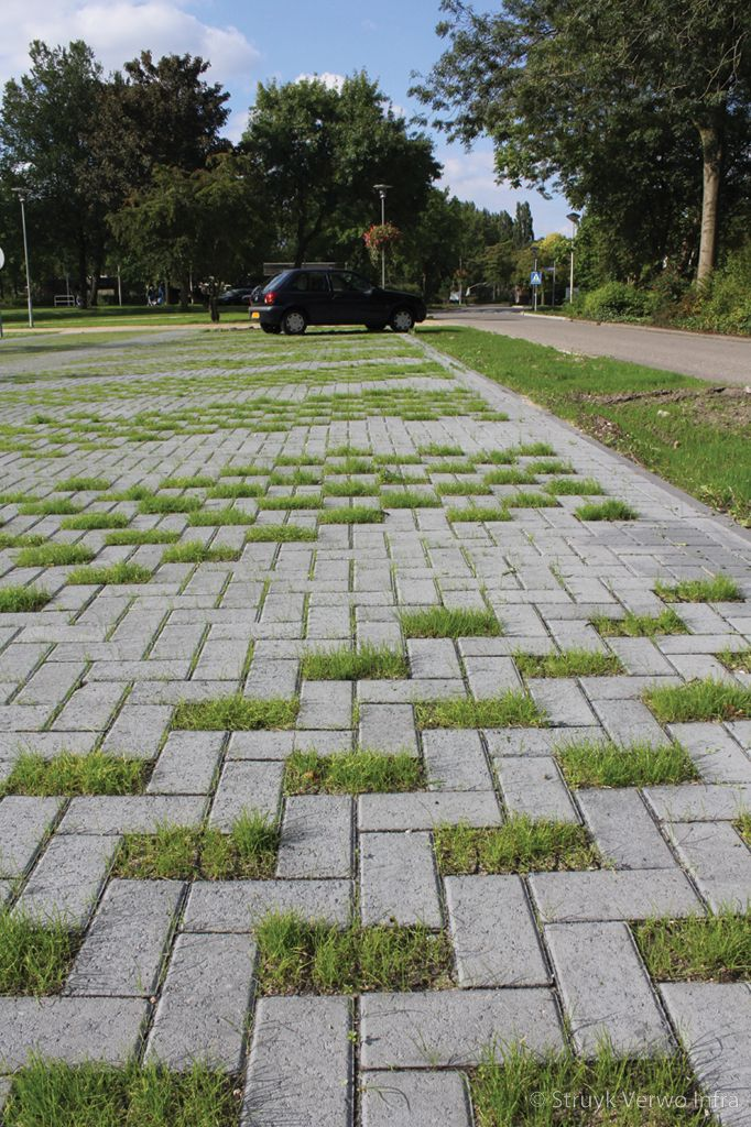 Groenbestrating gras bestrating greenbrick waterdoorlatende bestrating grasstraat