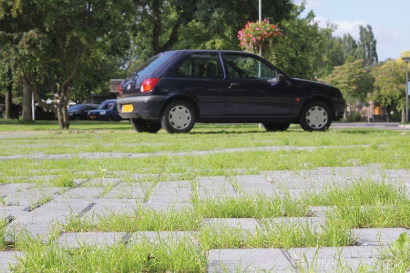 Groenbestrating op parkeerplaats ursula park land van boer bos grasklinker