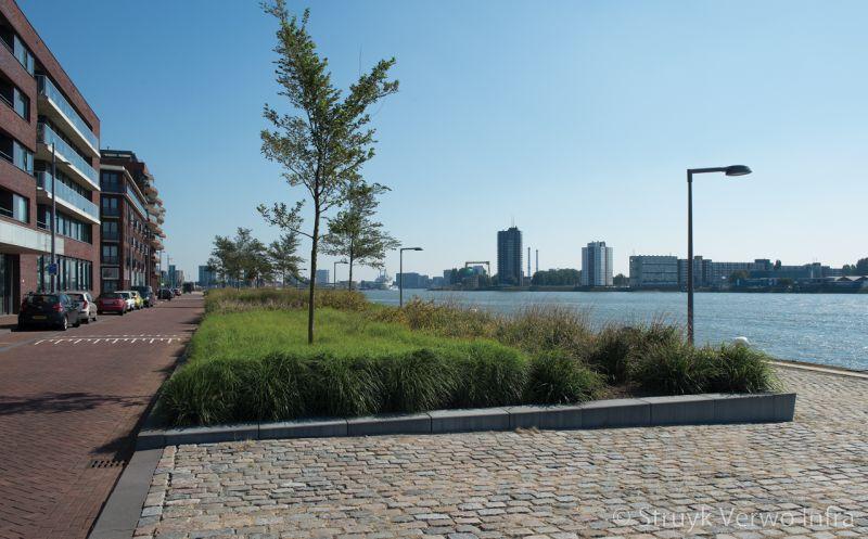 Groenstrook omgeven door trottoirbanden omranding plantvakken parkbanden