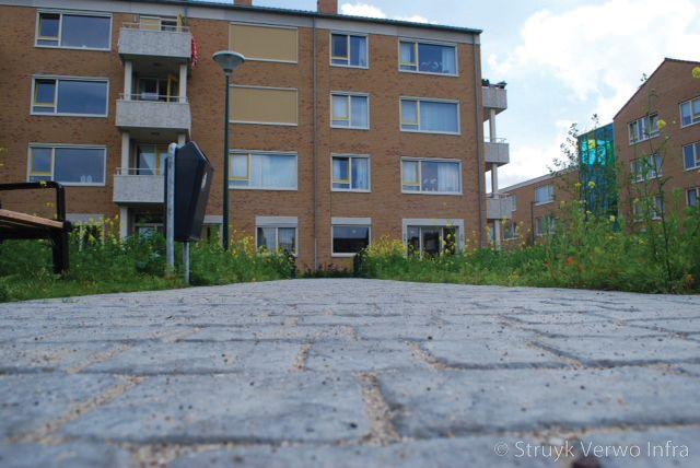 Cobblestone park woerden vloerplaat met cobblestone motief exclusieve betonplaten
