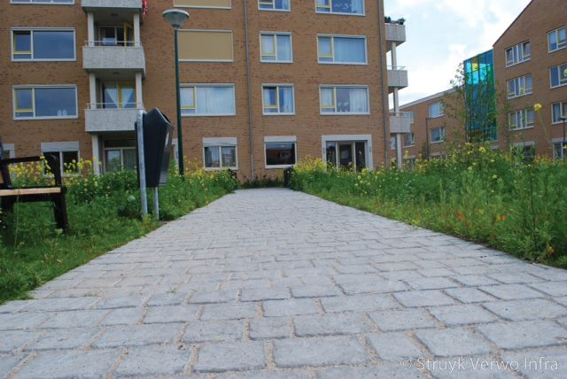 Vloerplaat met motief kasseien cobblestone park te woerden