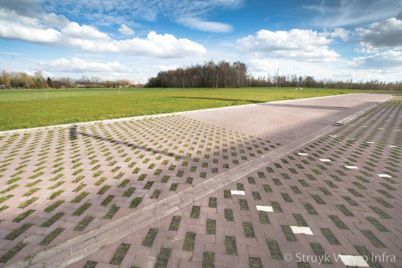 Groenbestrating greenbrick groenbestrating in combinatie met andere stenen grasbetonstraatstenen