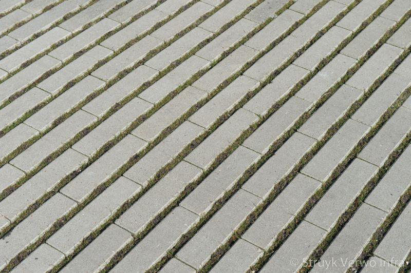 Hydro lineo groenbestrating graslijnen groenstroken bestrating met gras