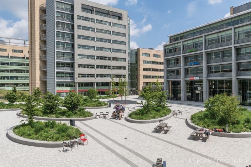 Inrichting buitenterrein zitranden met groen secoya campus
