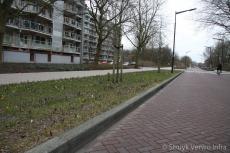 Verhoogde trottoirbanden 18 cm zicht