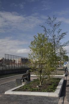 Groenbescherming wijk Laan van Spartaan