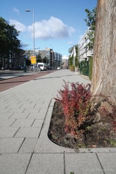 Renovatie Oude Dijk Rotterdam