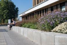 Zitranden binnentuin wooncomplex