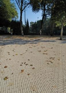 Tennispark & Vondelpark
